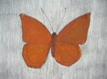 """Butterfly (brown)"" (2012), pencil & crayon, 23 x 27cm (9 x 10.6in)"