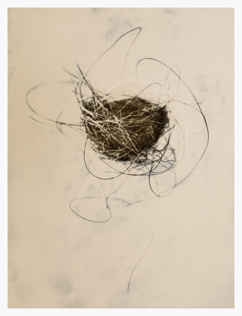 'Horse Hair's Nest', Mixed media, Edn. of 25, 101.6 x 76.2 cm (40 x 30 in)