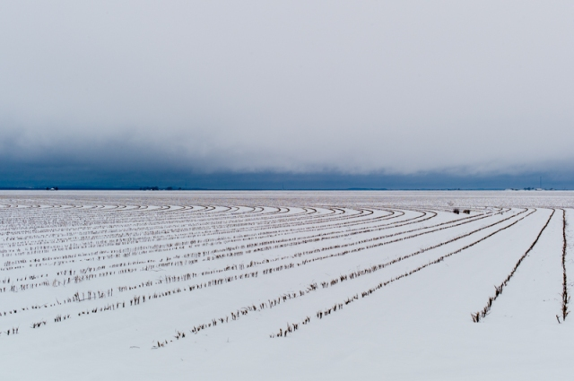 "Chris King, ""Snow outside Wall, Texas - 76904"" (2013), C-type print, Edn of 5, 76.2 x 114.3 (30 x 45 in)"